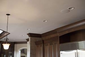 truaudio ceiling pic